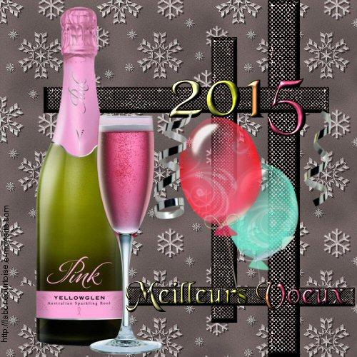 meilleurs voeux 2015-02