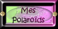 Mes Polaroïds