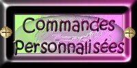 Commandes personnalisées