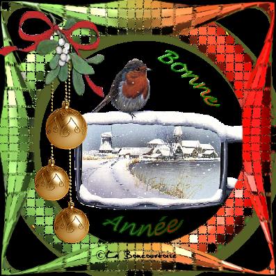 bonne-annee01.png