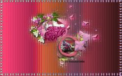 image15-1.jpg